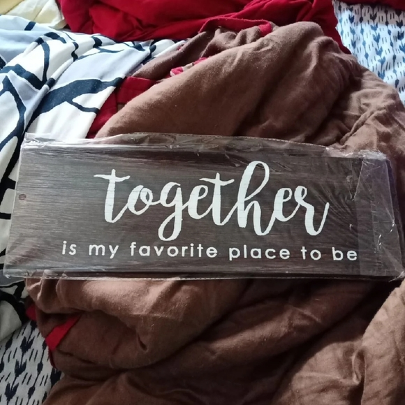 Wall decor and picture hanger